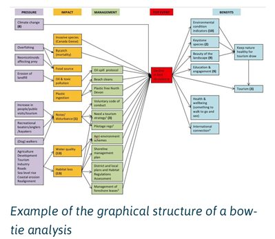 Example of a bow-tie analysis