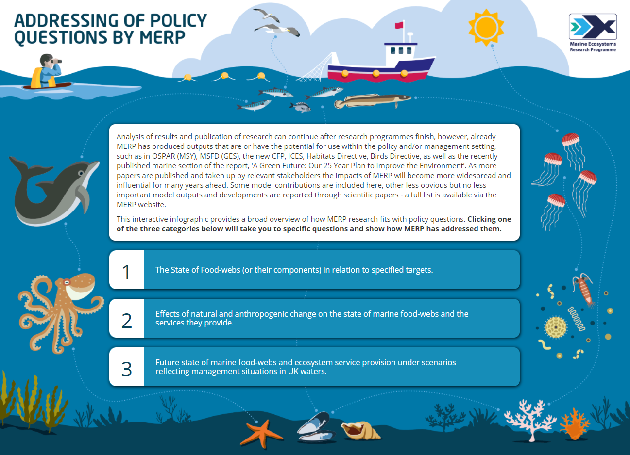 Screenshot of the policy questions interactive