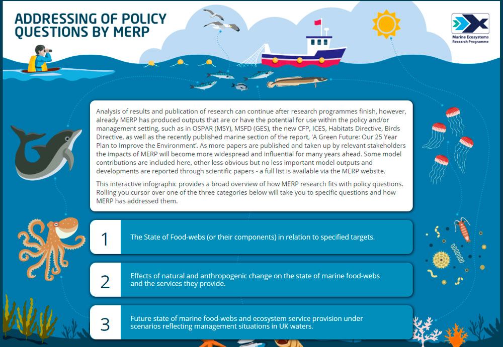 Policy question interactive